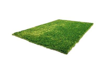 Groen hoogpolig vloerkleed Diadeem