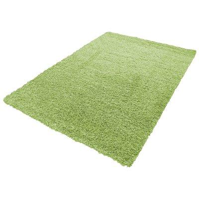 Groene vloerkleden Adriana Shaggy  1500/AY Groen